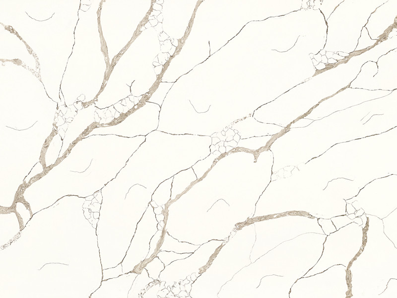 Calacatta Quartz Color